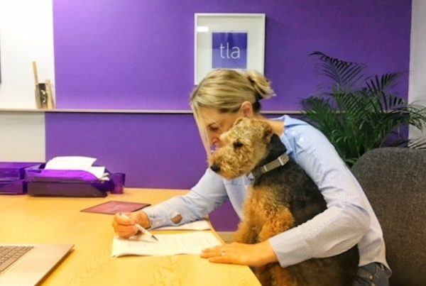 That Little Agency | Our Thoughts | Bring Your Dog To Work Day